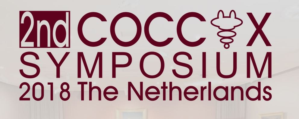 (Flyer for Dordrecht coccyx symposium)